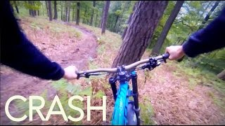 CRASH INTO A TREE!! | Downhill by Luis Gerstner