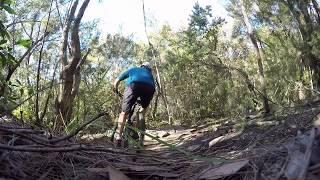 A Not So Secret Trail in Sydney