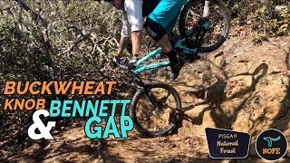 ROOTY AND LEAFY - Mountain Biking Bennett Gap...