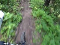 Swine Flue Trail, July 2012