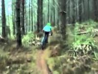 Flying Fox - The Woodhill MTB Park