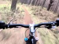Woodhill MTB - Ironhorse