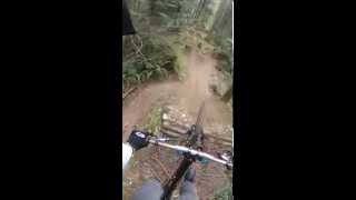 12 steps on a downhill bike