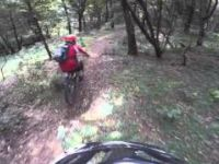Trail 11, Menagesha, Ethiopia, Oct 10, 2015