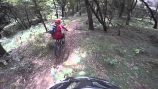 Trail 11, Menagesha, Ethiopia, Oct 10, 2015