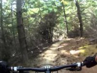 Wanaka Sticky Forest Lower Peroxide