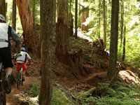 McKenzie River Trail Mountain Biking (Part 1)