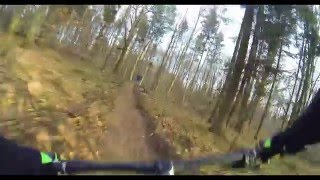 Forest Gap chest cam