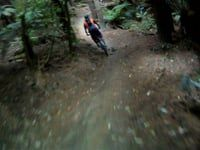 (more) Corners: MTB trail in Whaka Forest,...