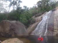 Alligator Creek Recon