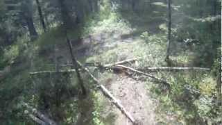 High Froelher EPIC DOWNHILL
