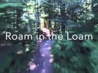 Golden Boner / Roam in the Loam / Instant...