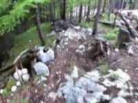 50 Grad Downhill Feuerkogel | LINES