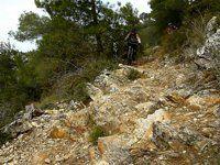 5 trail; Part 2