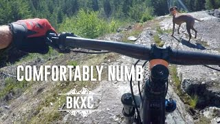 Comfortably Numb, Whistler - Trail Guide