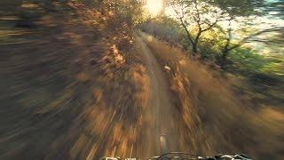 DH To Millard Camp Mountain Biking, Pasadena...