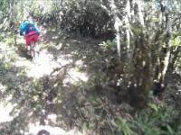 Fanal Ribeira Funda Trail