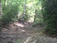 Big Rock trail DuPont State Park