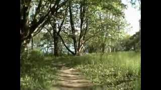 Wildwood Lake Trail