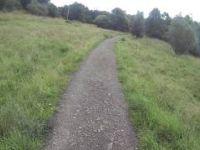 Grassy Descent mugdock park