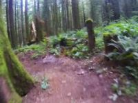 Canyon Loop Trail Community Forest, Chilliwack...