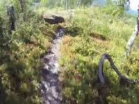 Sweden, Hemavan Bike Park Trail Nr  4