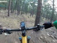 Wild Turkey - Gimbal Stabilized GoPro - SMOOTH