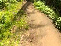 Silver Star Bike Park - Rock Star [bottom...