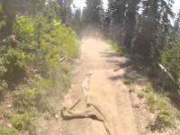 Sun Peaks Bike Park - Repeat Offender [Aug 2013]