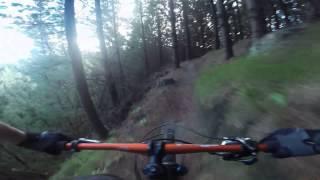 Eskdale Mountain Bike Park - Tinker