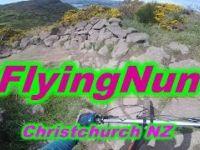FlyingNun - Christchurch NZ - by Hugo