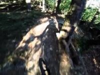 Finale Ligure - Madre Natura Trail