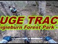 Luge Track - Craigieburn Forest Park - NZ by Hugo