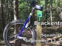 Brackentrail