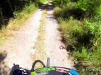 Brasiliana Trail
