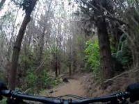 Cougar MTB Park Tokoroa | Bedrock Rise