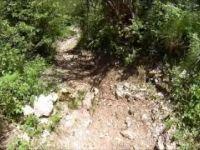 Malga Barbeghera - La Fossa (monte Palon,...