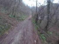 Strada per il 'Boion' - Alano di Piave
