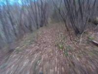 Sentiero Pecolét - Alano di Piave