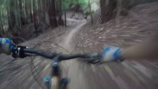 Soquel Demonstration Forest: 2016.07.28