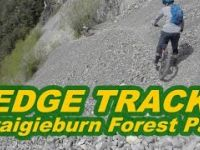 Edge Track - Craigieburn Forest Park - NZ by Hugo