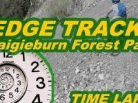 Edge Track - Craigieburn Forest Park - NZ by...