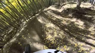 Brand new trail.  Evolution Bike Park