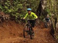 Pirongia Trails - Trick or Treat