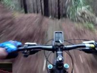 Woodhill - Acquired Taste MTB trail