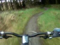 Drunken Druid - Nant yr Arian MTB Trails