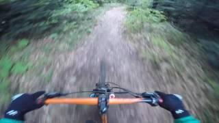 Parashka trail (Skole)