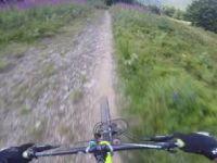 Gorillaz trail
