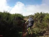 Fox Trail - Madeira | LINES