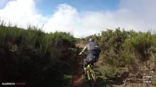 Fox Trail - Madeira   LINES